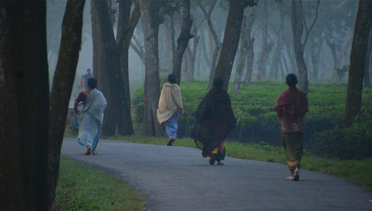শীতের রাজ্য শ্রীমঙ্গলে জেঁকে বসেছে শীত (ছবি : প্রিতম পাল)