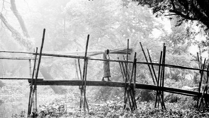কুয়াশার আঁচলে খুলনার জনপদ। (ছবি : এম ডি অসীম)