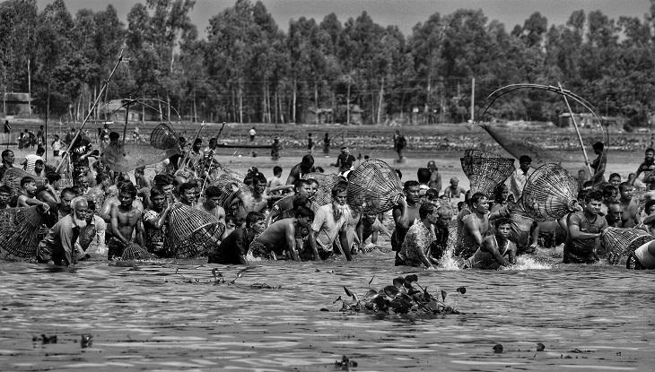 শিঙায় ফুঁ দিয়ে শুরু হয় বাউৎ উৎসবে মাছ ধরা  (ছবি : রেজওয়ানুর রহমান)