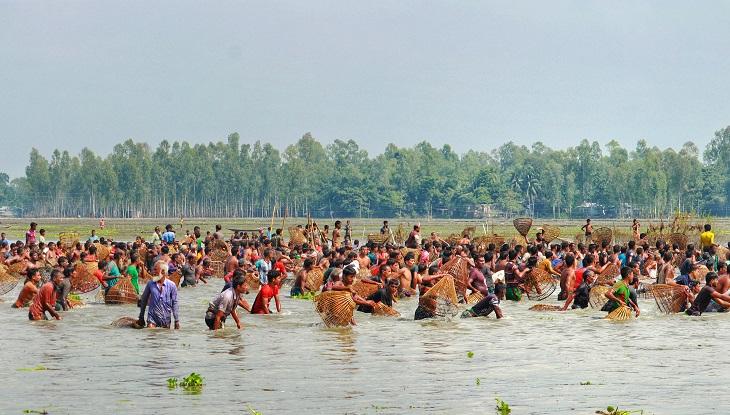 বাউৎ উৎসবে দল বেঁধে শতাধিক মানুষ বিলে নামে মাছ ধরতে (ছবি : রেজওয়ানুর রহমান)