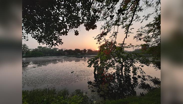 নয়নাভিরাম জাহাঙ্গীরনগরের লেকের পাড়ের দৃশ্য (ছবি: নাবিলা বুশরা)