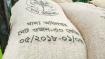 জামালপুরে পাচারকালে হতদরিদ্রের ১৩১ বস্তা চাল উদ্ধার