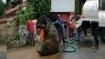 নর্দমা পরিষ্কারে নেমে মিলল চোখ ছানাবড়া দৈত্যাকার ইঁদুর! (ভিডিও)