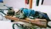কাশিয়ানীতে পাগলের চিকিৎসা মেলেনি