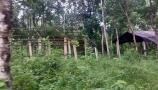 দোহাজারী আদর্শ গ্রামের বর্তমান অবস্থা