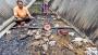 দুর্বৃত্তের আগুনে ৭শ মুরগিই পোড়েনি, পুড়েছে মতিউরের হাজারো স্বপ্ন