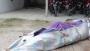 পটুয়াখালীতে তিন তলা থেকে পড়ে শ্রমিকের মৃত্যু