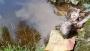 ব্রাহ্মণবাড়িয়ায় পলিথিনে মোড়ানো নবজাতকের লাশ উদ্ধার