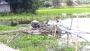 অবৈধভাবে বালু উত্তোলন করায় মেশিন মালিকের কারাদণ্ড