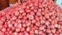 আগামীকাল থেকে রাজশাহীতে খোলা বাজারে পেঁয়াজ বিক্রি শুরু