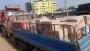 গাজীপুরে পিকআপের ধাক্কায় মানসিক প্রতিবন্ধীর মৃত্যু