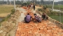 নিম্নমানের ইট ও বালির পরিবর্তে মাটি দিয়েই রাস্তা পাকাকরণ