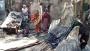 চট্টগ্রামের আনোয়ারায় বসত বাড়িতে অগ্নিকাণ্ড
