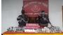 বেনাপোলে ৯ লাখ টাকা মূল্যের নিষিদ্ধ ভারতীয় ওষুধ জব্দ